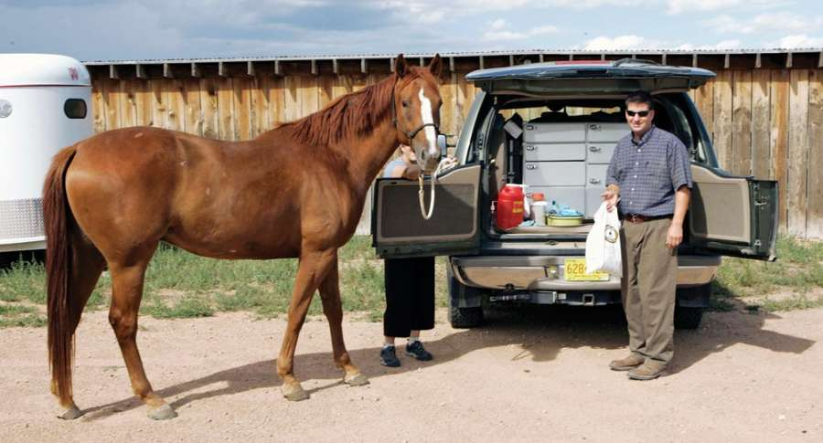 Mobile Equine Veterinary Services