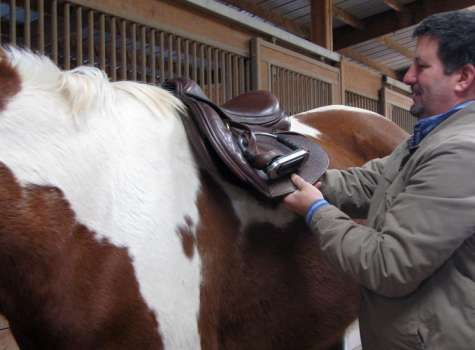 Dr. Meddleton saddle fitting a horse